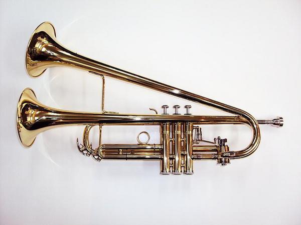 NAVER まとめ珍しい管楽器まとめ