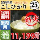 新米 米 こしひかり 25kg お米 安い 小分け 5kg 1等米 29年産 富山県 白米 こしひかり 送料無料 北海道・沖縄・九州・一部を除く