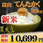 富山県 新米 1等米 てんたかく 白米9kg×3袋または玄米30kg 平成26年産
