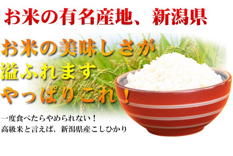 高級米 白米 新潟県こしひかり