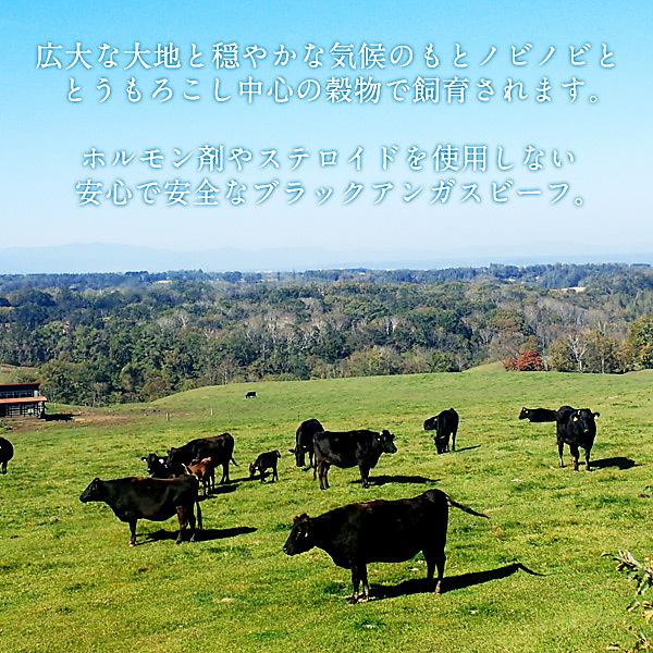 ブラックアンガス牛リブロース&ミスジステーキ1kgセット(リブロース600g+ミスジステーキ400g)5セットまで1配送でお届け クール[冷凍]便でお届け