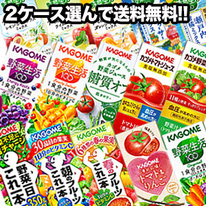 カゴメ[野菜一日これ一本 野菜生活100 野菜ジュース トマト 果汁] 200ml紙パック×48本[24本×2ケース][賞味期限:3ヶ月以上]【3~4営業日以内に出荷】【送料無料】北海道・沖縄・離島は送料無料対象外
