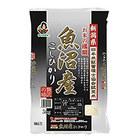 【送料無料】[28年産]新潟県 魚沼産 こしひかり白米10kg[5kg×2袋] 30kgまで1配送でお届け 《同梱A》