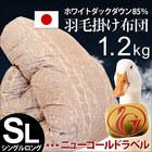 【送料無料】羽毛布団 シングル 寝具 日本製 ホワイトダックダウン85% 国産 羽毛掛け布団 ニューゴールドラベル 増量1.2kg シングルロングサイズ 150×210cm〔3SA-85T〕