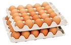 【純国産鶏もみじ卵】赤玉大50個入り