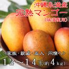 【送料無料】【味満喫用】沖縄県糸満産完熟マンゴー約4kg(12玉~14玉)