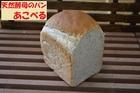 天然酵母のパン あこべる グラハムブレッド1斤
