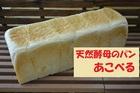 天然酵母のパン あこべる フランス食パン1本(3斤分)