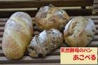 天然酵母のパン  あこべる ハード系セット