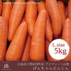 北海道十勝産アロマレッド品種げんちゃんにんじん 秀品 Lサイズ5kg