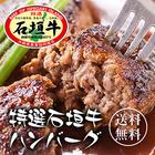 【送料無料】石垣牛特選ハンバーグ 8個入り