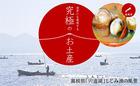島根県宍道湖産食べるしじみお味噌汁味噌汁(みそ汁)ギフトセット 10食入