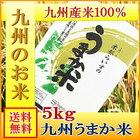 【送料無料】【5日~7日の営業日以内の発送です】九州産 精米 うまか米 九州産ブレンド米 5kg