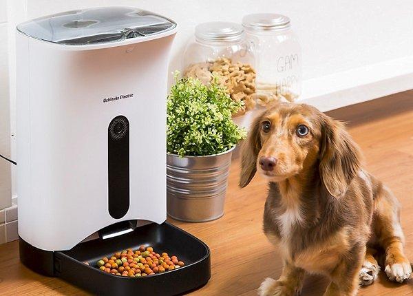 カリカリマシーン 猫&犬用 自動給餌器 タイマー式音声録音機能付き