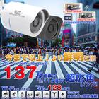 【送料無料】 有線/無線LAN対応ネットワークカメラ SecuSTATION ボディーカラー:白