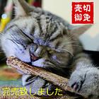 【送料無料】またたびの木 原木2本入り×5袋セット