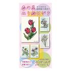 楽彩セット「春の花ぬりえはがき」