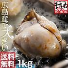 ジャンボ広島カキ1kg(約30粒入[2L・Lサイズ混合選択不可]約5人前※加熱用【送料無料】