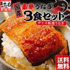【国産】うなぎ蒲焼き3食セット[3人前][送料無料]
