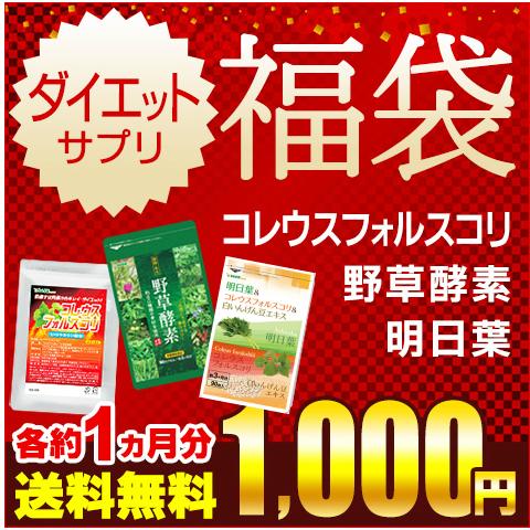 【ダイエットサプリ福袋】野草酵素・明日葉・コレウルスルスコリ《各約1ヵ月分》 ■メール便送料無料