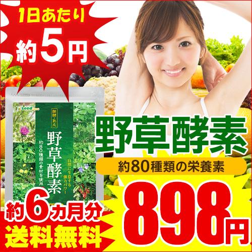 【1日あたり5円】 綺麗なボディラインを目指したい方へ!野草酵素《約6ヵ月分》 ■メール便で送料無料 ■代引・日時指定不可 /