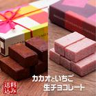 2種類の生チョコを一緒にお届け!5ピース×2種類 和菓子屋さんのしっとりチョコレート メール便配送 送料込み 【ポイント交換チラシ】