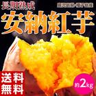 特別な処理で甘さUP!種子島産 循環型農法「安納紅芋」約2キロ ※常温 203z00754