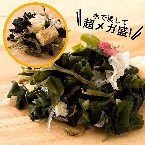 寒天 寒天海藻サラダ 100g 送料無料 寒天 かんてん ワカメ わかめ キクラゲ きくらげ