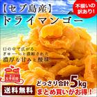 セブ島 ドライ マンゴー 5kg(1kg×5) ドライマンゴー 端っこ [訳あり] ドライフルーツ …