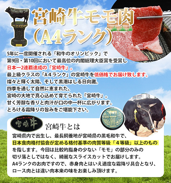 宮崎牛(A4ランク)モモ入焼肉セットB(500g)