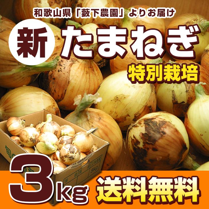 <特別栽培>和歌山県「藪下農園」無選別!新たまねぎ(3kg)