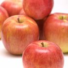 送料無料 訳ありサンふじ 約3kg バラ詰め 林檎、りんご、リンゴ、ふじ、フジ(ポイント)
