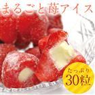 【送料無料】まるごと苺アイス 30粒 /練乳いちごアイス/アイス/イチゴ/ 05P26Mar16