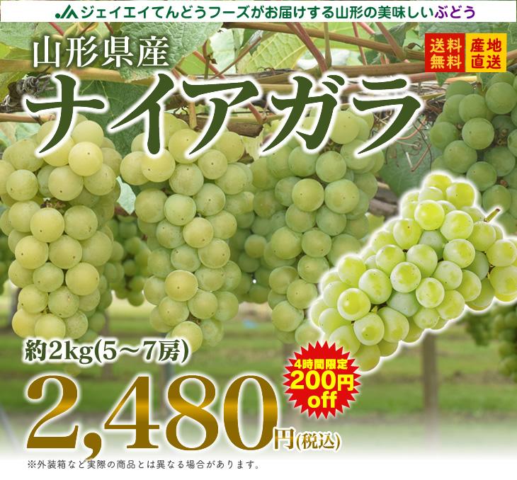 【ギフト秀品】【ぶどう】山形県産ナイアガラ約2kg(5~7房)