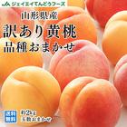 【訳あり】山形県産黄桃 品種おまかせ約2kg(5玉~10玉) 【送料無料】※一部地域は別途送料 f16