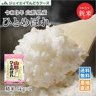 29年産 新米 10kg米 送料無料米 ひとめぼれ米 山形県産米 白米 JA米 産地直送米