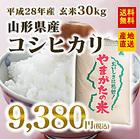 【平成28年産】山形県産 コシヒカリ 玄米(30kg) 送料無料※九州・沖縄・一部離島を除く