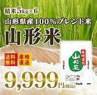 米 30kg米 送料無料米 ブレンド米 山形県産米 生活応援米 白米 精米 5kg×6米