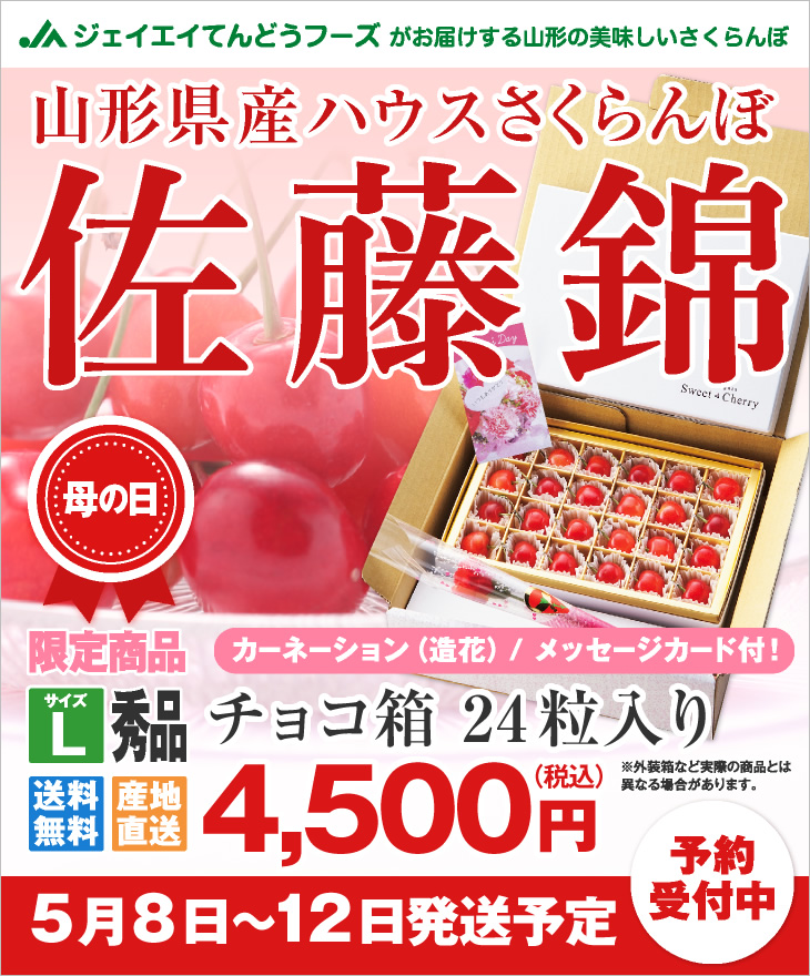 山形県産ハウスさくらんぼ母の日ギフト チョコ箱24粒入