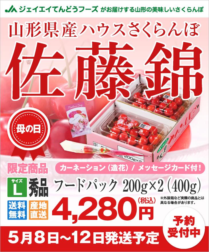 山形県産ハウスさくらんぼ母の日ギフト フードパック200g×2