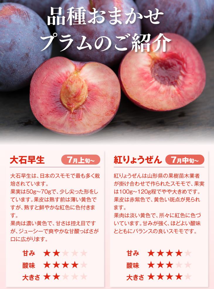 品種おまかせプラム・すもものご紹介 | 大石早生 大石早生は、日本のスモモで最も多く栽培されています。果実は50g~70gで、少し尖った形をしています。果皮は熟す前は薄い黄色ですが、熟すと鮮やかな紅色に色付きます。果肉は濃い黄色で、甘さは控え目ですが、ジューシーで爽やかな甘酸っぱさが口に広がります。紅りょうぜん 紅りょうぜんは山形県の果樹苗木業者が掛け合わせで作られたスモモで、果実は100g~120g程でやや大きめです。果皮は赤紫色で、黄色い斑点が見られます。果肉は淡い黄色で、所々に紅色に色づいています。甘みが強く、ほどよい酸味とともにバランスの良いスモモです。