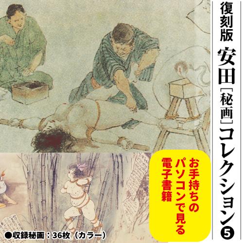 安田[秘画]コレクション⑤ CD-ROM
