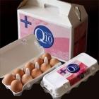 コエンザイムQ10 奥丹波の卵 2パック 鶏卵 20個入り 専用化粧箱入り お中元 ギフト