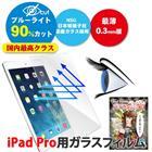 iPad Pro 12.9インチ用 アイパッドプロ用 ガラスフィルム ブルーライトカット ガラスの美面 保護フィルム ガラスカバー 送料無料