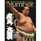 疾風!大相撲 新時代の力士たち