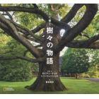 心に響く樹々の物語
