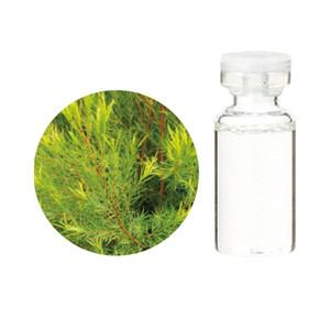 生活の木 エッセンシャルオイル ティートゥリー精油 3ml