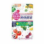 医食同源ドットコム 爽快酵素プレミアム (120粒) 【健康補助食品】