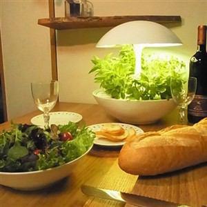 オリンピア照明 OMA-01 家庭用水耕栽培器 「灯菜 Akarina Terrara テララ」