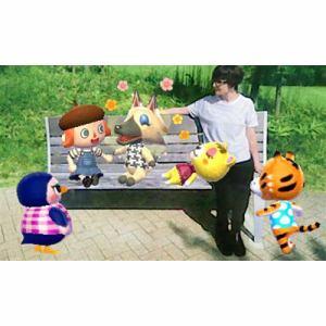 任天堂 とびだせ どうぶつの森 amiibo+ 【3DS】 CTR-W-EAAJ
